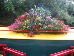 Narrowboat Flowers