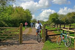The North Dorset Trailway