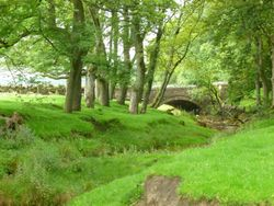 Off the footpath from Stone House to Hawes.