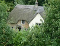 The Cottage In The Woods.
