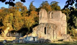 Roche Abbey, South Yorkshire