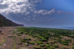 The Beach at Reculver