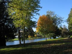 Caversham Court Gardens in Autumn