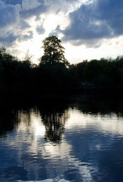 Mote Park reflections