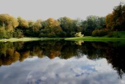 A view of Fountains Abbey