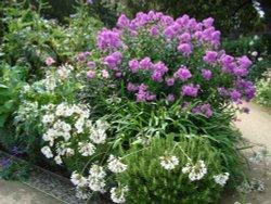 Elliptical Garden