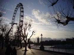 Queen's Walk, Thames Embankment & London Eye.
