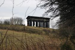 A view from Penshaw Woods