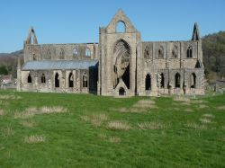 Tintern Abbey in all it's Grandeur