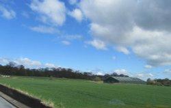 Branxton Farm