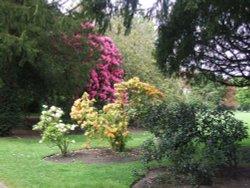 Croxtheth Hall Gardens