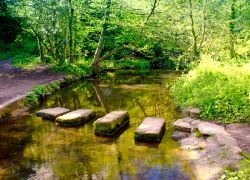 Stepping Stones, Roche Abbey, South Yorkshire