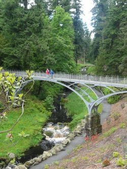 Cragside House,the Bridge below the Rockery.