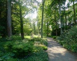 Tree Trail, Thorp Perrow Arboretum