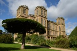 Hardwick Hall Wallpaper