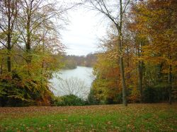The Lake at Blenheim Palace, Woodstock
