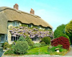 Beautiful cottage in the village Corfe
