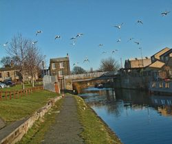 Looking along the Canal in Mirfield