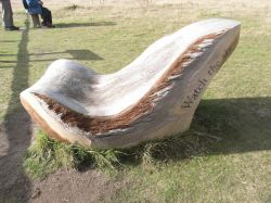 A chair at Minsmere Nature Reserve