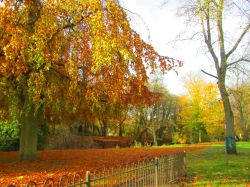 Autumn in Matlock