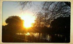 Valence Park,Dagenham