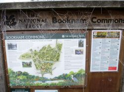 Notice Board and the web of ice.