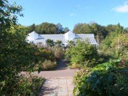 Tropical House, National Botanic Garden of Wales. Wallpaper