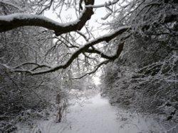 Winter wonderland in Watermead Country Park