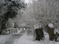 Walking in the Snow at Watermead Country Park