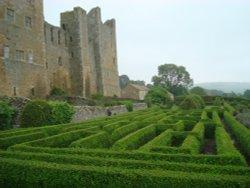 Bolton Castle Maze