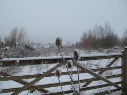 Irthlingborough Winter scene