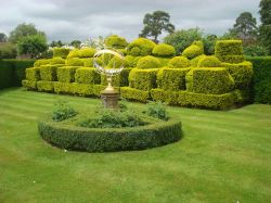 Golden Yew Chess Set in the Tudor Garden