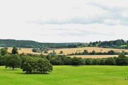 View From Ragley Hall