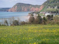 Exmouth coastal walk looking towards Sidmouth