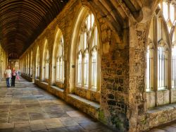 Chichester Cathedral Cloister