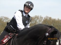 Police Woman, Buckingham Palace