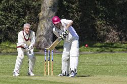 Fareham and Crofton Cricket