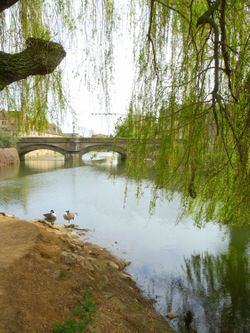The River Welland in Stamford