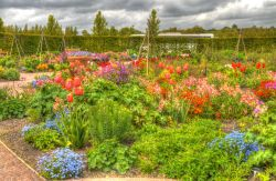 Hyde Hall Gardens, Essex