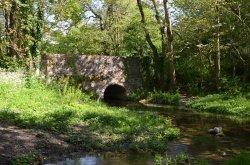Kettle Bridge, River Cerne