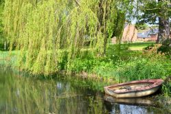Everdon pond
