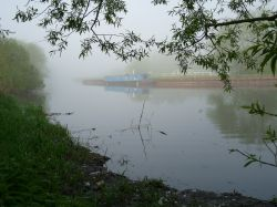 Early morning mist in Watermead Country Park