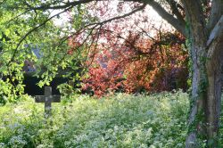 Brockhall churchyard