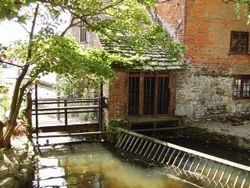Anglo Saxon watermill, Christchurch