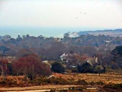 Godslington Heath