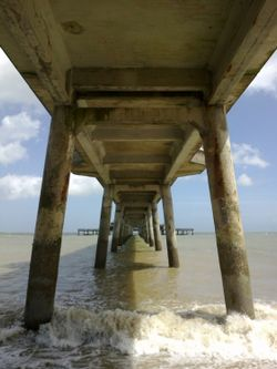 Under the Boardwalk, down by the sea.