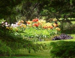 Greenwich Park, Flower Garden
