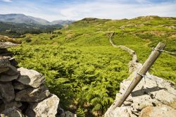 Loughrigg Fell and Ivy Crag