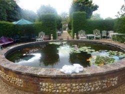 In Saxmundham Walled Garden