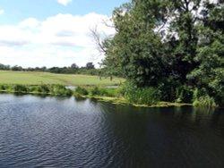 River Chelmer, Little Baddow